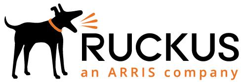 «Мегатрейд» становится дистрибьютором решений для корпоративных беспроводных сетей Ruckus Networks