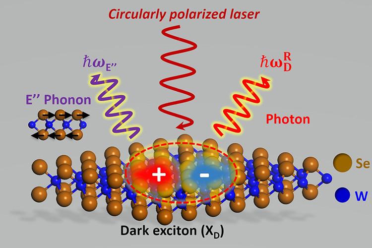 Учёные раскрывают потенциал 2D-материала для квантовых вычислений