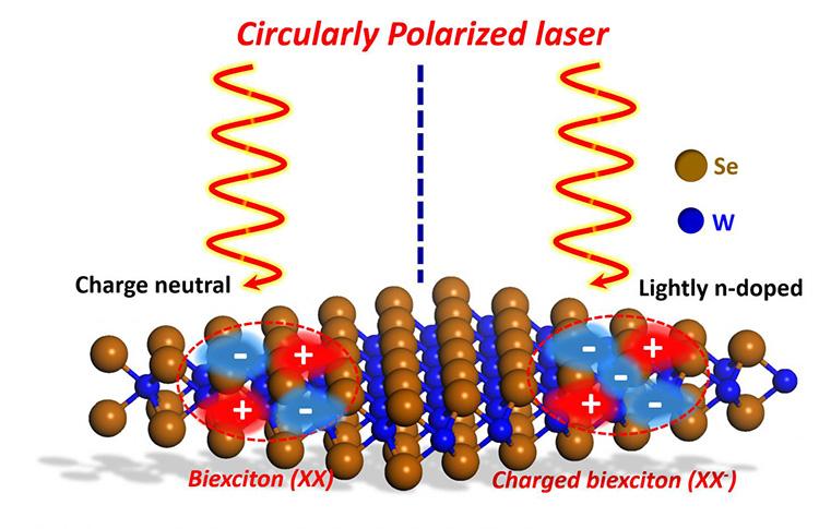 Изучение динамики экситонов позволит улучшить будущую электронику