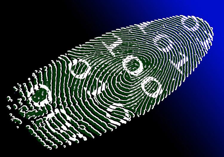 Новый ресурс «Тёмного Веба» поставил торговлю идентичностью на широкую ногу